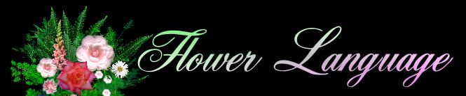 Flower Language: The Secret Language Of Flowers