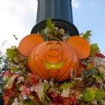 Disney in November