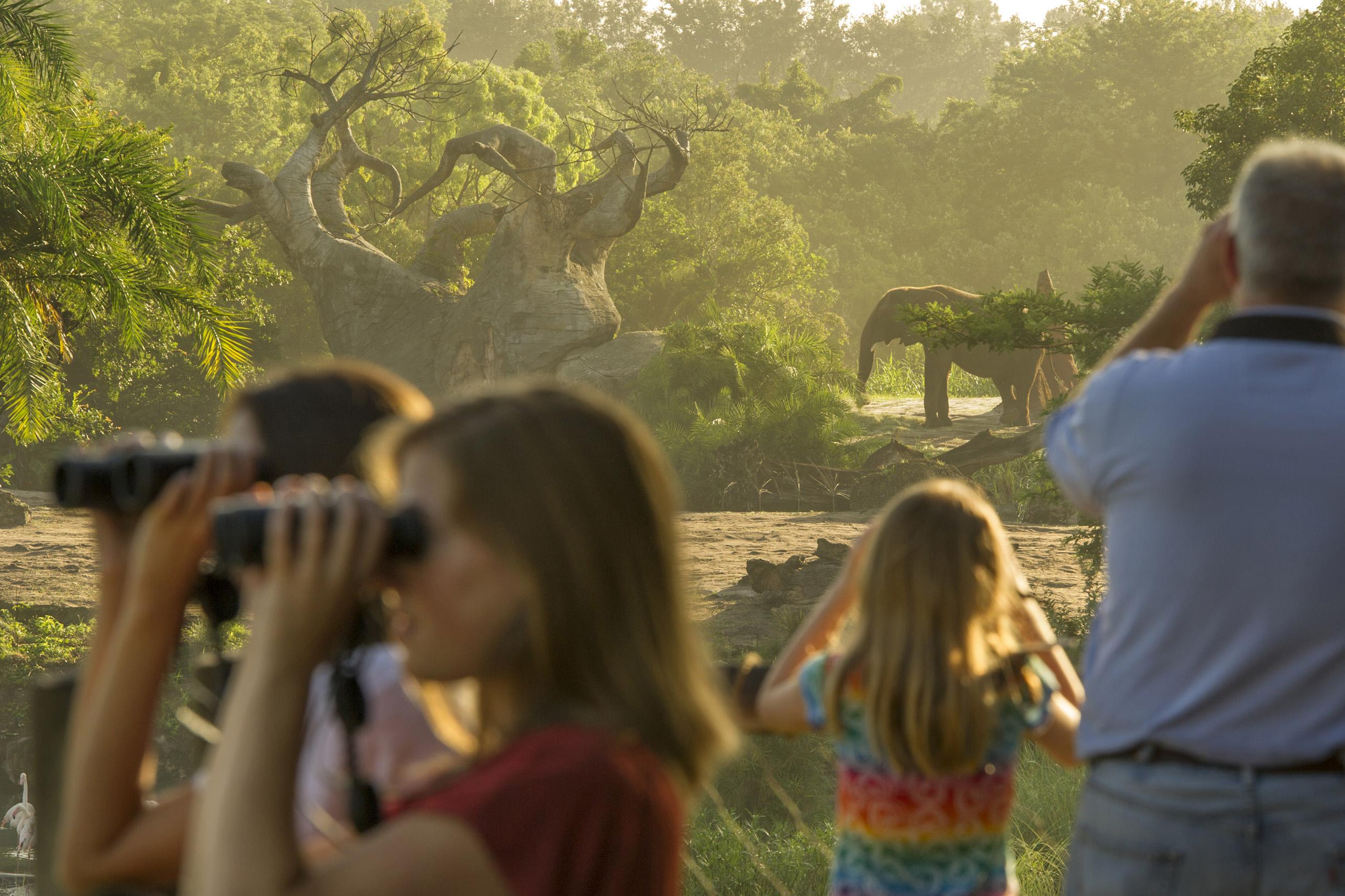 Walt Disney World Wild Africa Trek at Animal Kingdom