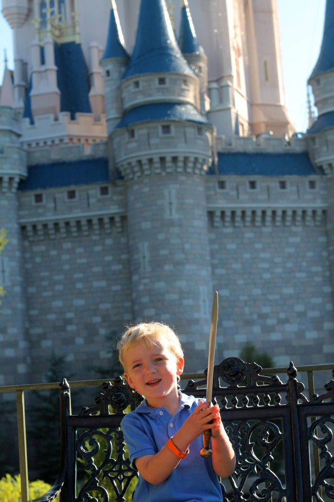 Cinderella's Royal Table Sword and Kisses
