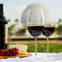 Menus & Tips for Epcot's 2016 International Food & Wine Festival
