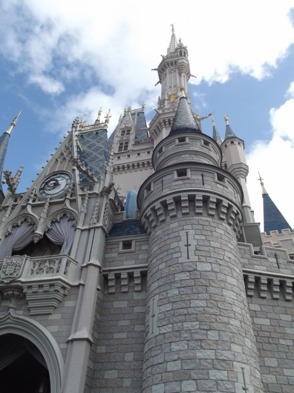 Cinderella Castle-Picture by Lisa McBride