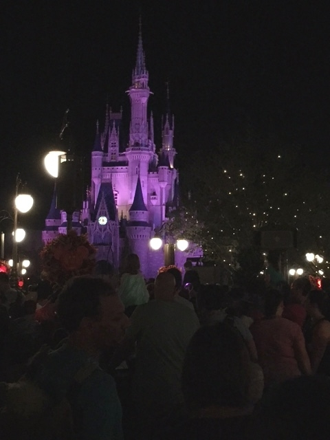 View of Cinderella Castle from FastPass+ Viewing Area-Plaza Gardens East