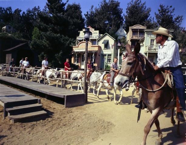 Image by Disney Parks Blog