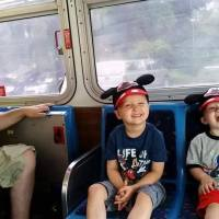 Experiences with Accessibility in Walt Disney World