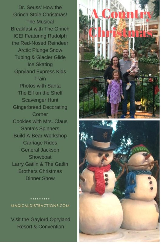 Check out all the exciting offerings at A Country Christmas at Gaylord Opryland