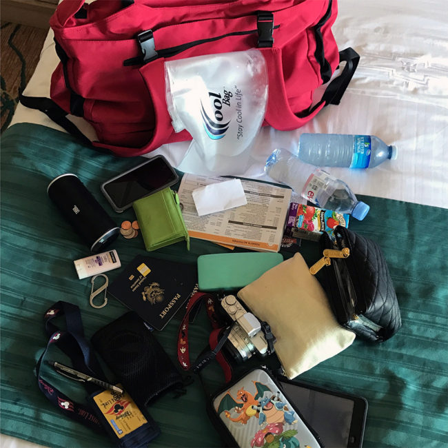 All the things the CoolBag holds