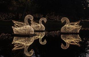 Bellingrath Gardens Magic Christmas in Lights