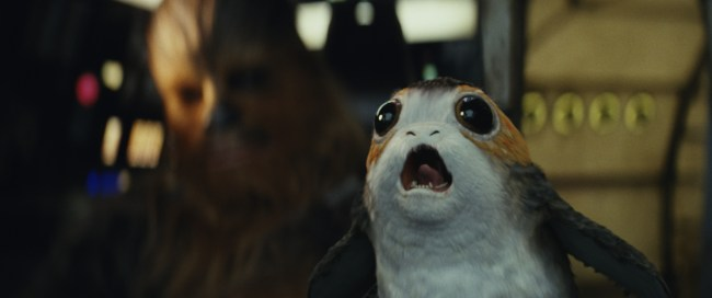 Porgs steal the show in The Last Jedi.