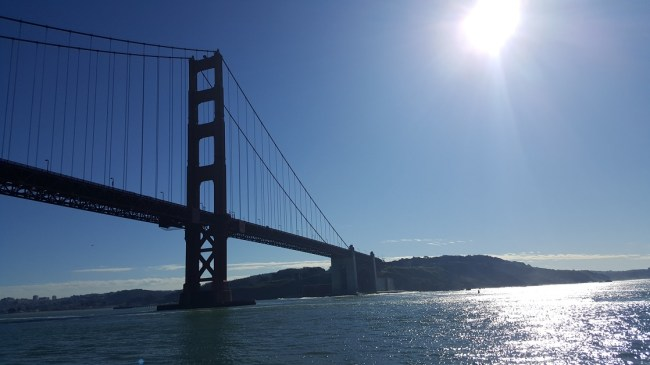 Cruise under the Golden Gate Bridge on the Blue & Blue Fleet Bay Cruise.