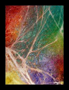 Nervous System Healing and Regeneration