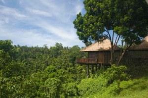 Bali Holiday in Ubud Valley Villa Resort 1000x