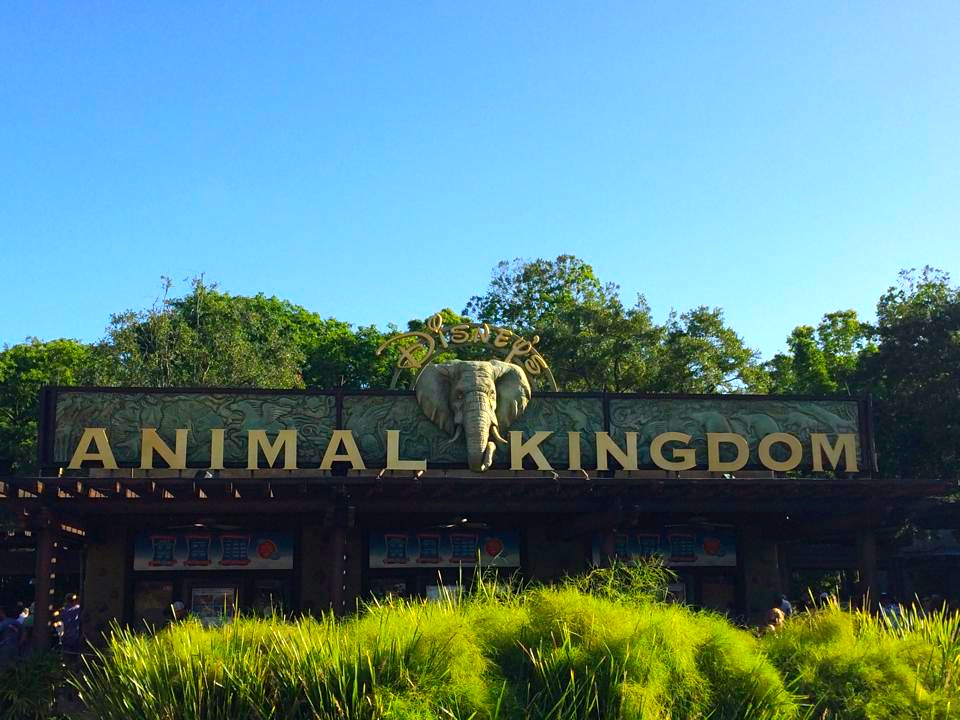 Photo of welcome sign at Disney's Animal Kingdom