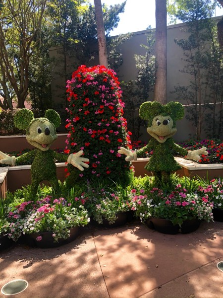 mickey and minnie topiary at 2021 epcot flower and garden festival