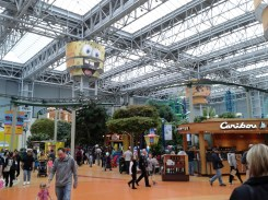 Mall of America_rollercoaster