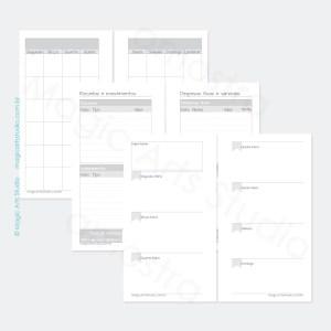 Insert permanente com visão mensal em duas paginas, controle financeiro, visão semanal em duas páginas e espaço para anotações importantes em tamanho personal com bandeirinhas.