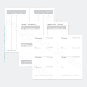 Insert permanente com visão mensal em duas paginas, controle financeiro, visão semanal em duas páginas com controle de água e espaço para notas em tamanho personal com bandeirinhas.
