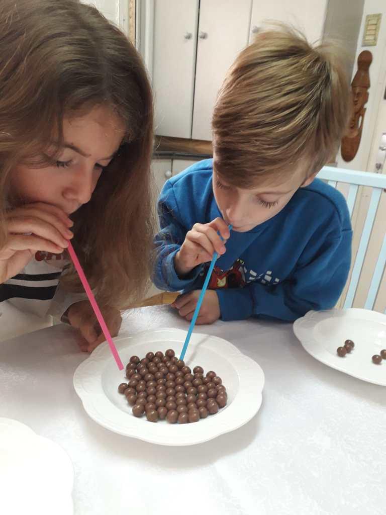 יצירה בשוקולד