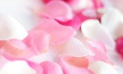 "медитация ""Лепестки роз"""