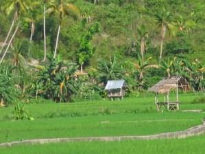 Over de Filippijnen