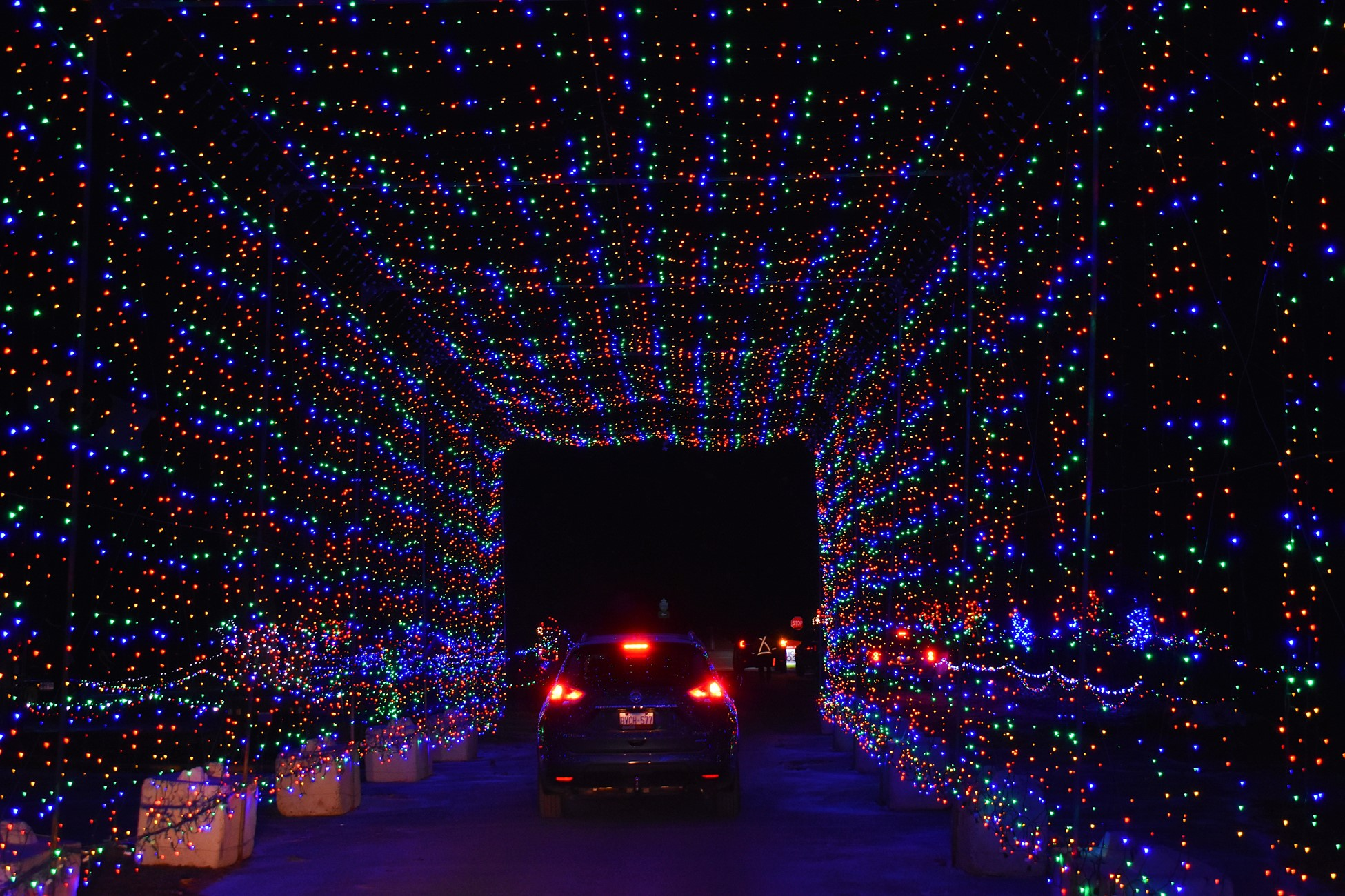 magic of lights brightens up the night