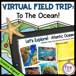 Virtual Field Trip to the Ocean - Google Slides & Seesaw Distance Learning
