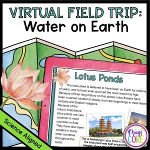 Virtual Field Trip: Water on Earth in Google & Seesaw Format