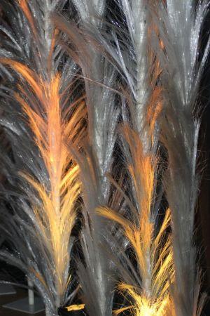 Veren-Oranje-1