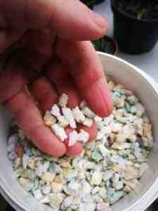 Średnie kamienie z akwarium