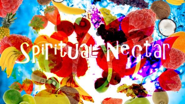 Therapy ARt Spiritual NEctar Gavinas Magikal door