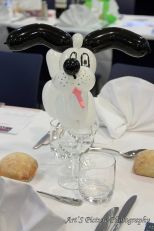 Magikhopital gala de magie hotel kyriade prestige merignac 20 03 2014 35