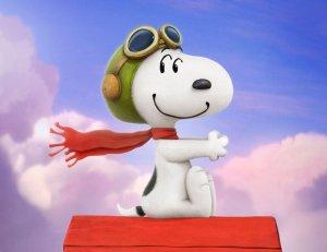 Casa Snoopy