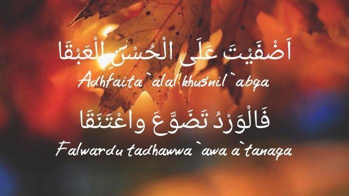 Lirik Lagu Sholawat Adfaita
