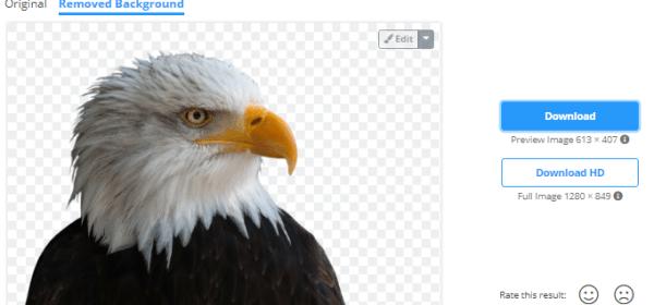 Rekomendasi 3 Situs Online Untuk Menghapus Background Foto