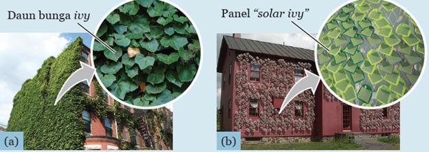 Solar ivy ini dapat dipasang dengan pola sesuai dengan keinginan