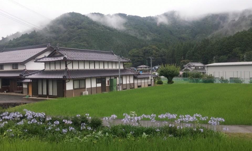 Une semaine de volontariat dans une ferme bio à Ichijima