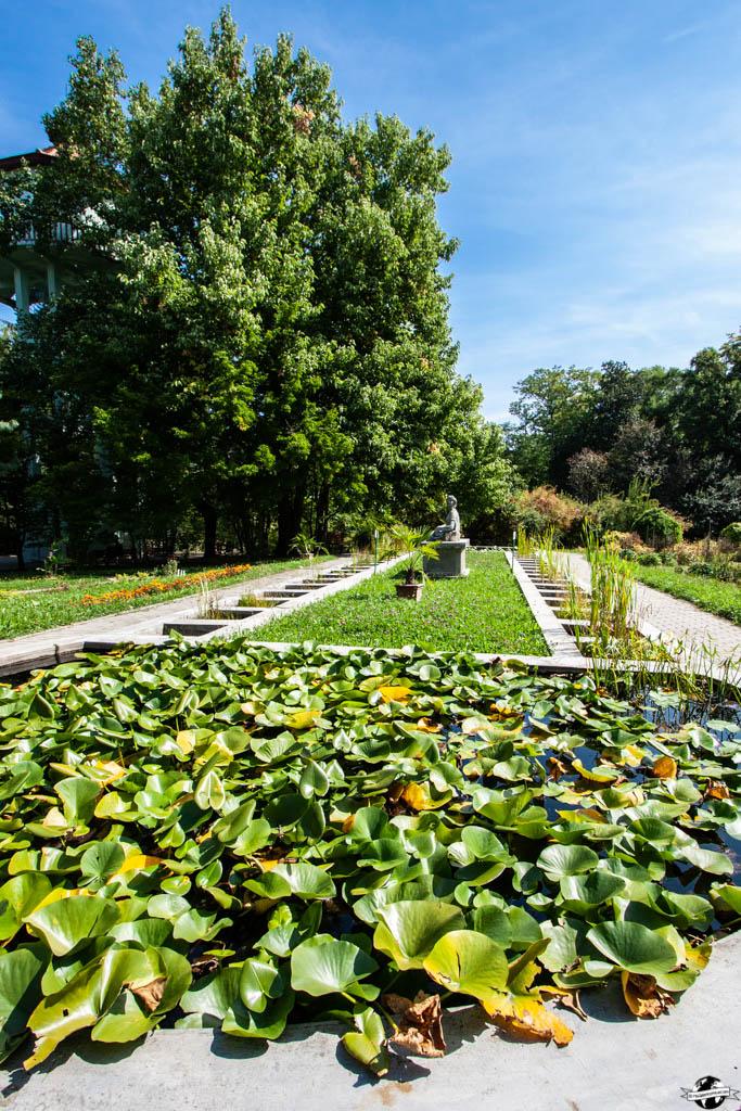 jardin botanique cluj