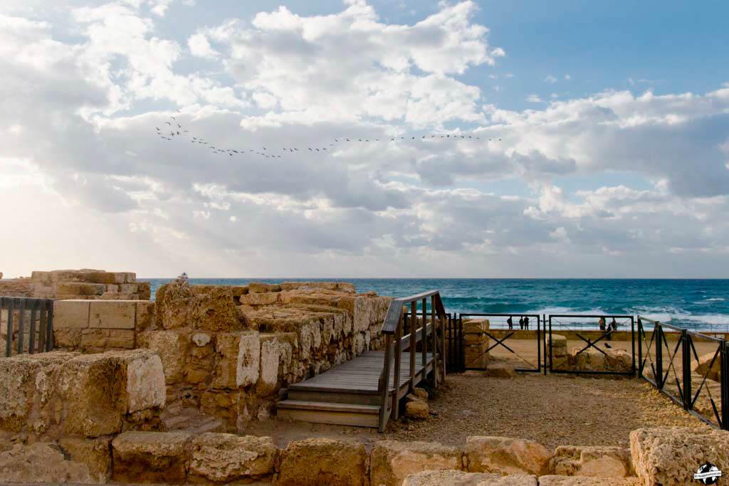 voyage israel cesare