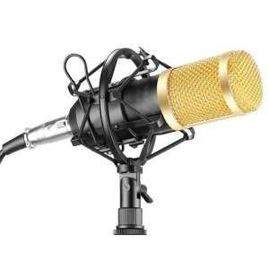 Microphone Bêta BT 888