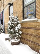 snow-chicago-jan-2014-2