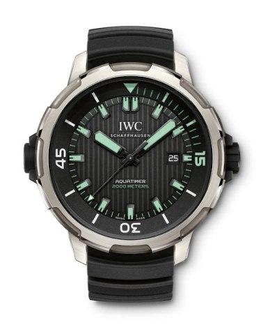 IWC Aquatimer Automatic 2000 (IW358002)