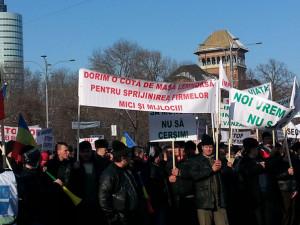 protest forestier. foto mediafax