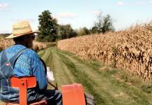 fermieri