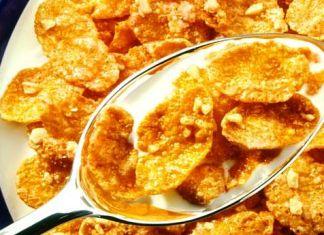 salmonella în cereale
