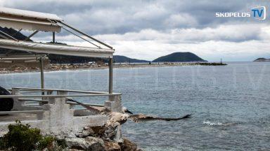 Pelican 4 Skopelos TV 2