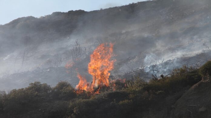 Μεγάλη φωτιά κοντά στη Βρύναινα Αλμυρού