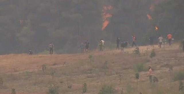 Νέες αναζωπυρώσεις στην Εύβοια – Ανθρώπινη αλυσίδα από τους κατοίκους για να σταματήσουν τις φλόγες