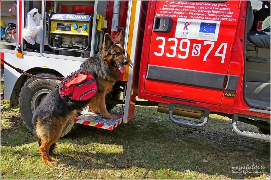 Byłbym dobrym strażakiem