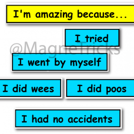 Toilet Training Focus Magnets