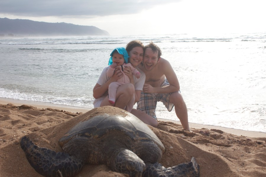 Family posing with a sea turtle in Hawaii